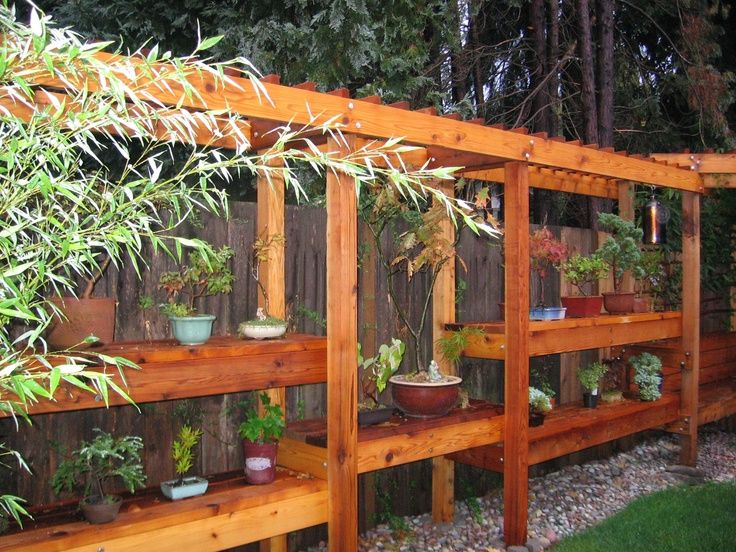 Corner Exhibition Stands Yard : Bonsai shelves and corner bench display outdoors