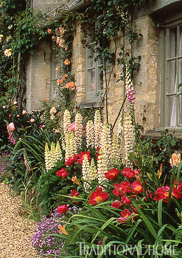 236 best Cottage garden images on Pinterest Flowers Flowers