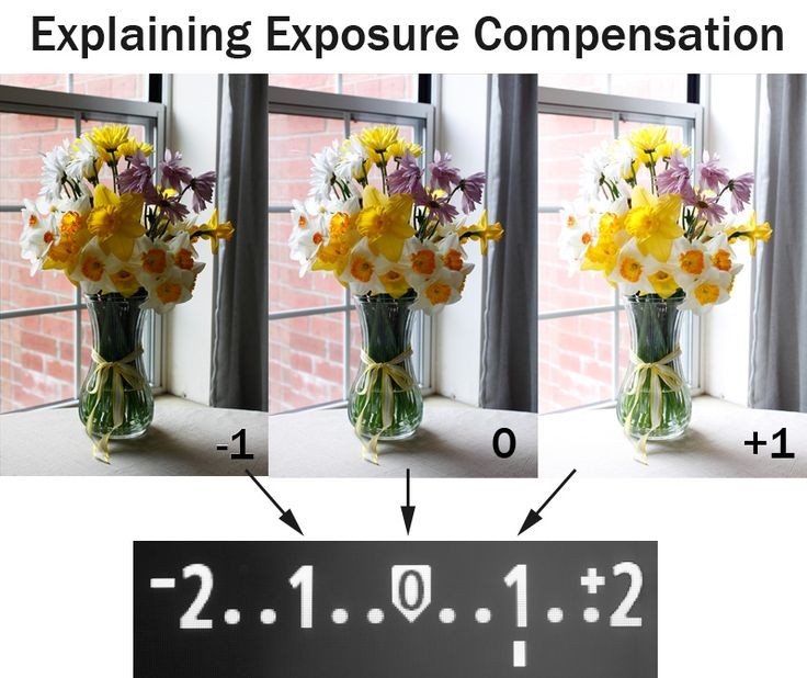 Explaining Exposure and the Exposure Compensation Scale | Boost Your Photography
