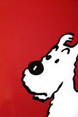 Tintin 03 - Milou | by Janus Jauch