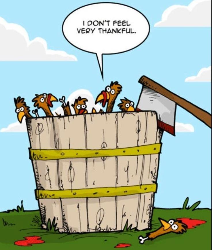 ...Thankful...???...LOL...Humor... All things funny