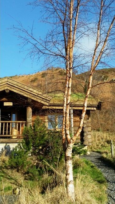 Sitting on the edge of the Lake District National Park and within easy reach of the Furness coast, these two delightful log cabins provide the best of both worlds for those who want to explore the many attractions of the Lakes and the Cumbrian coast. A tranquil setting on a hillside amongst a meadow. Sleeps 4.