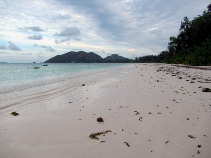 Cote d'Or on Anse Volbert is one of the most popular beaches on Praslin Island, Seychelles.