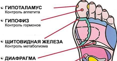 Рефлексология стопы: эти 7 активных точек способны вернуть тебя к жизни за пару минут!