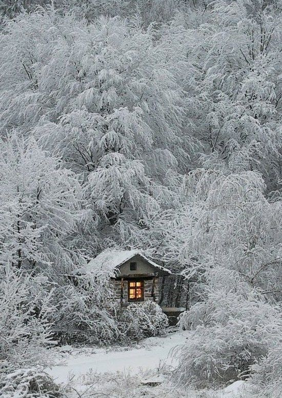 mountain | cabin | snow | white | forest | winter