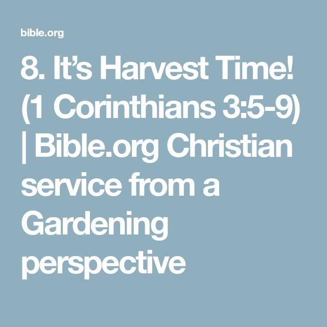 8. It's Harvest Time! (1 Corinthians 3:5-9)   Bible.org  Christian service from a Gardening perspective