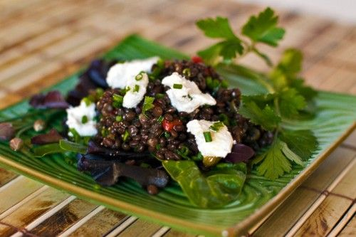 Warm Lentil Salad with Goat Cheese   Salads Galore!   Pinterest