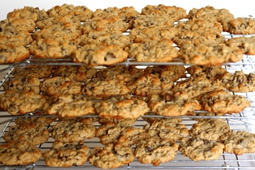 chunky peanut butter and oatmeal chocolate chipsters | Food & drink ...