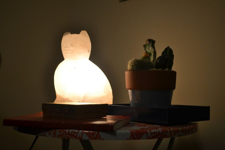 HIMALAYAN SALT LAMPS... DO THEY WORK? ARE THEY WORTH IT? Future Home Pinterest Salts ...