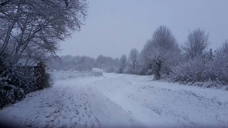 An outher winter pictures