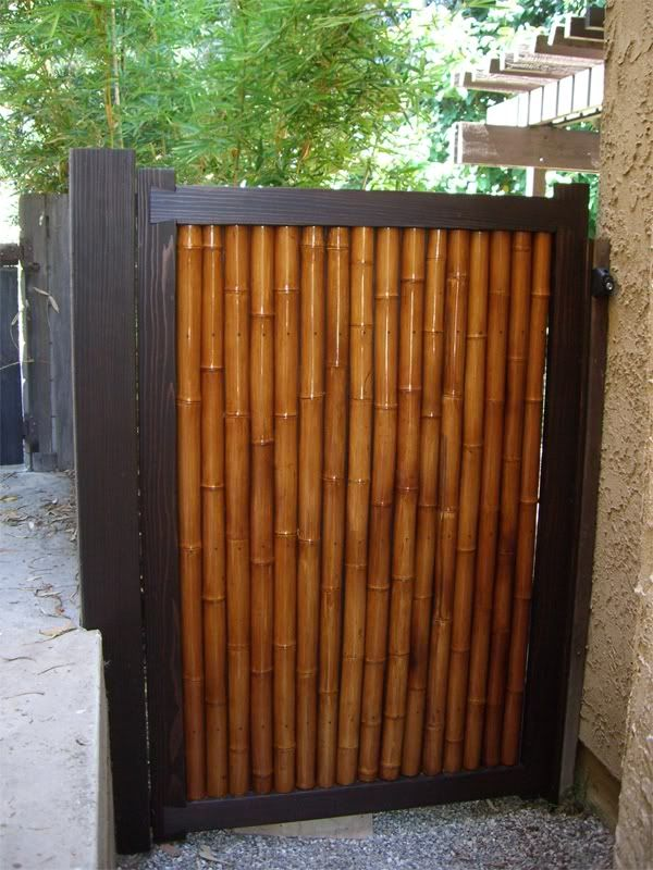Best 25 bamboo fencing ideas on pinterest bamboo fencing ideas bamboo screening fence and - Bamboo bar design ideas ...