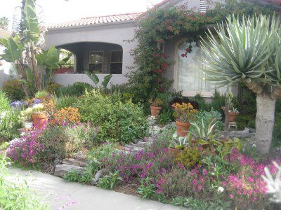 feature drought tolerant and California native plants and