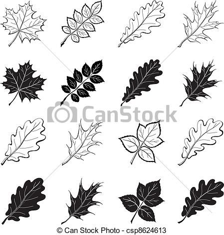 Leaves Of Plants Silhouettes Set Vector Image On VectorStock