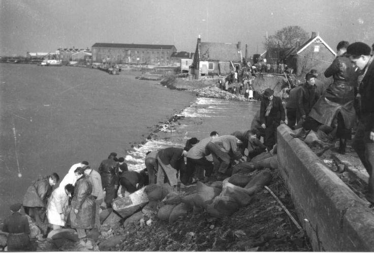 Flood in 1953... the Netherlands. .. floodsite.nl