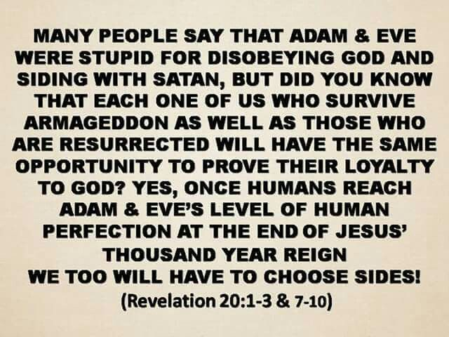Many people say that Adam answer Eve were stupid for disobeying God and siding with Satan, but did you know that each one of us who survive Armageddon, as well as those who are resurrected will have the same opportunity to prove their loyalty to God?