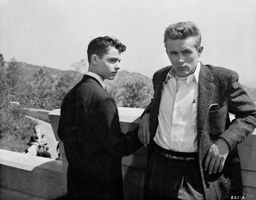James Dean. Rebel Without a Cause.: Sal Mineo, Dean O'Gorman, James D'Arcy, James Dean, Movie, Hollywood, Actor, Rebel, Photo
