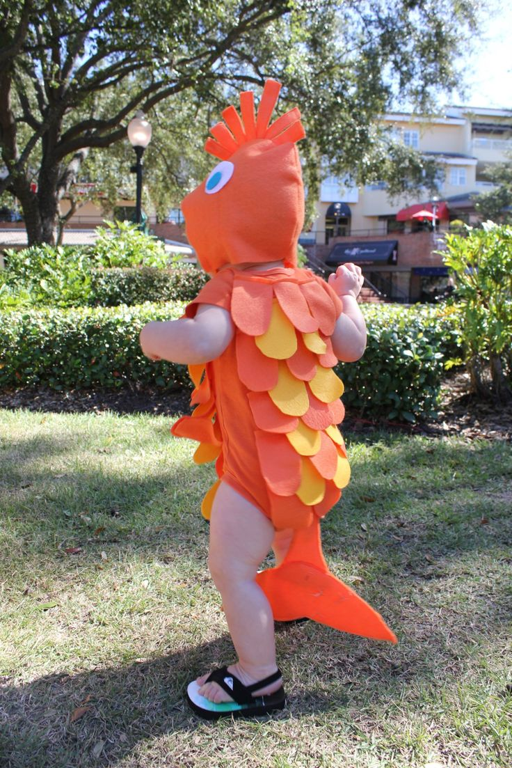 16 best halloween costumes for babie images on pinterest for Baby fish costume