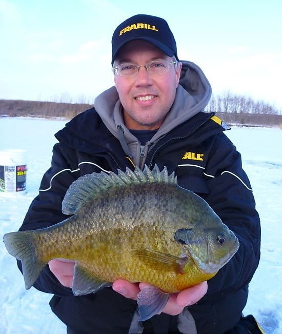 17 best images about bluegills bass on pinterest lakes for Fishing the midwest
