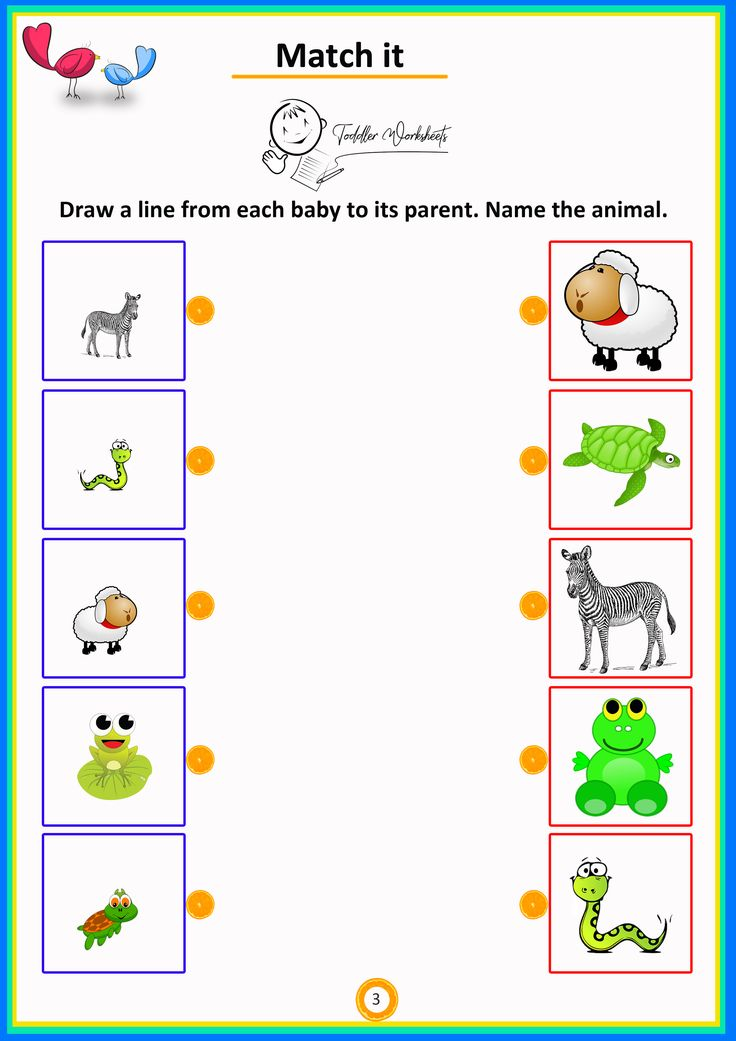 match the animals from their mothers to babies simple math thinking worksheets preschool math. Black Bedroom Furniture Sets. Home Design Ideas