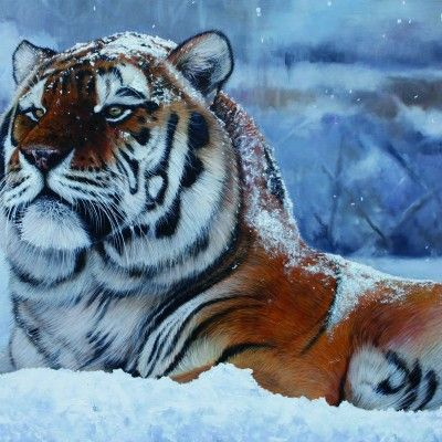 Snow King 31 by 46ins 2015 copy
