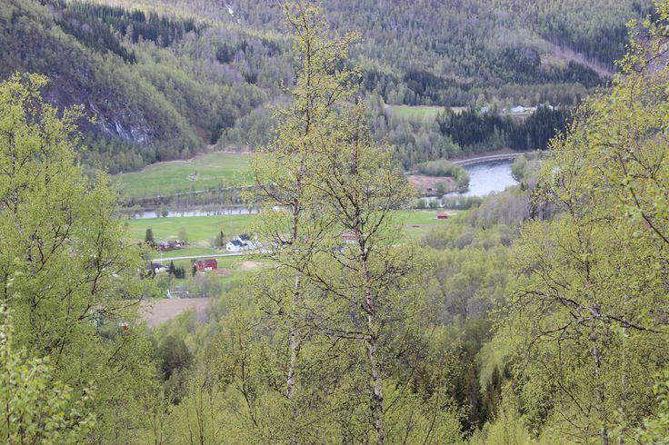 Part of Beiarn with the salemon river. Lite parti fra Beiarn med lakse elva.
