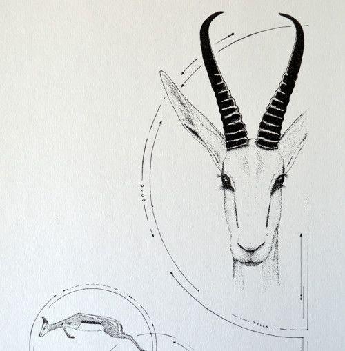 Antilopa v kruhu