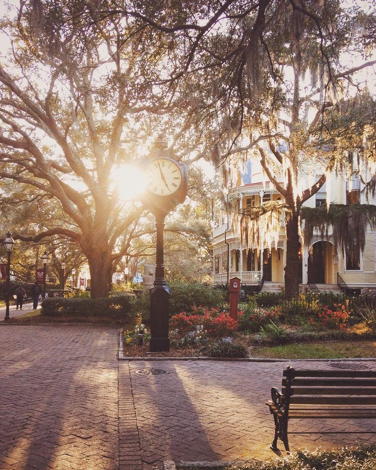 Evening sets over the College of Charleston, SC