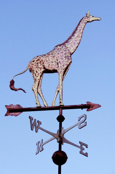 Giraffe Weather Vane by West Coast Weather Vanes.  Our Giraffe weathervane is truly one of our most spectacular weathervanes. The price includes all the gold leafing necessary to show off its distinctive contrasting markings. When made in the Small size (1-foot sculpture piece), the markings are, of necessity, somewhat simplified but when made in the medium, large or extra-large sizes, are very detailed.