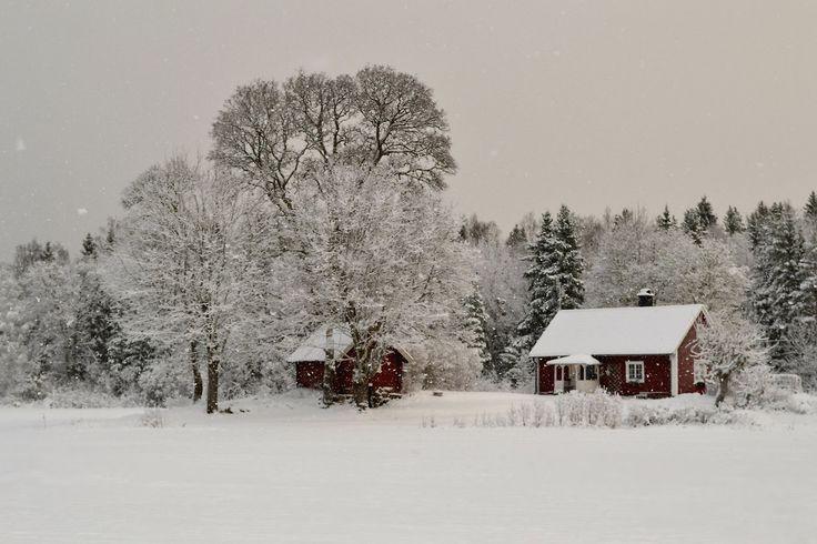 Winter 2014 byFrida Tuori, Sverige