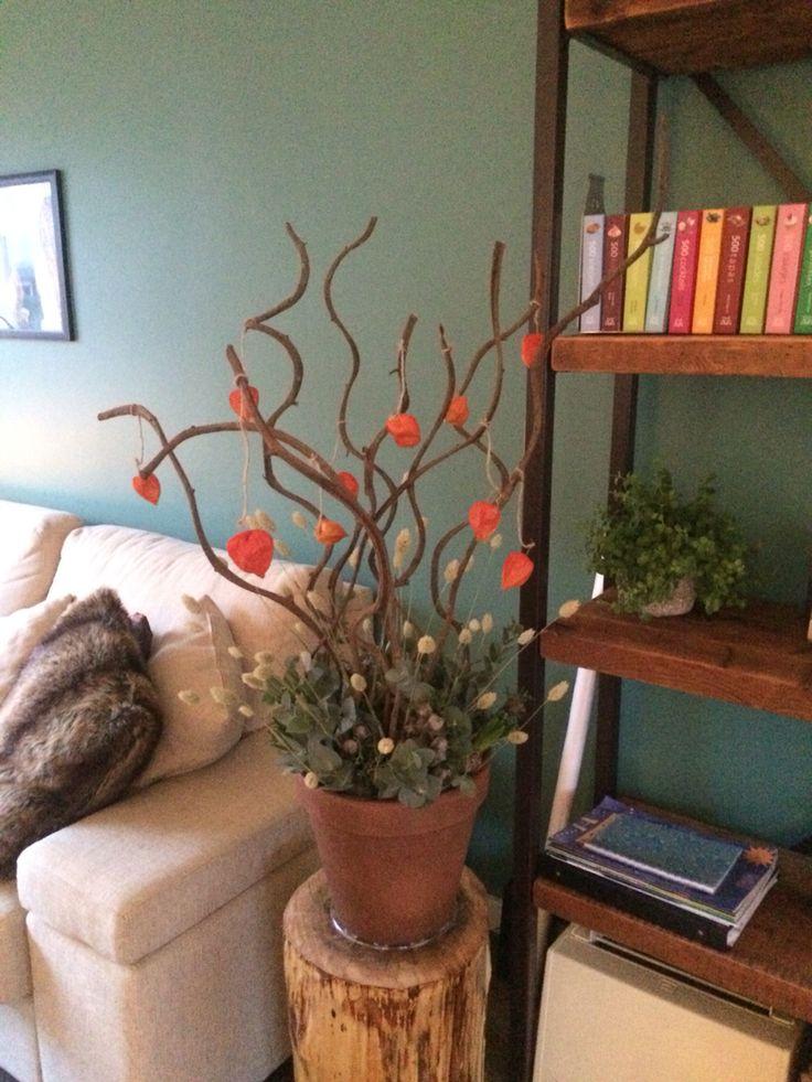 Terracotta pot opgemaakt met eucalyptus, takken en lampionnetjes! Gezellig.