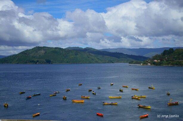 Costa de Valdivia