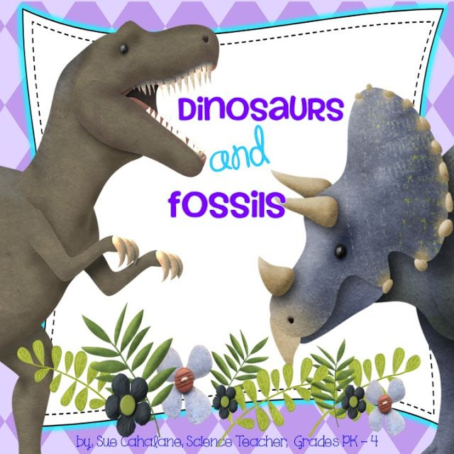 1000 images about dino fossils sensory ideas on pinterest activities preschool dinosaur and. Black Bedroom Furniture Sets. Home Design Ideas