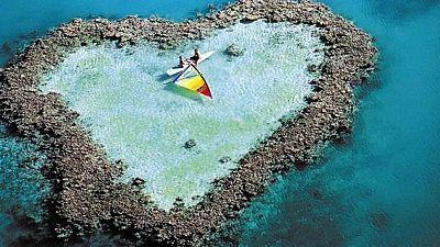 Velký bariérový útes hraje všemi barvami nad i pod vodou.