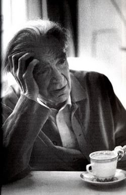 """No one recovers from the disease of being born, a deadly wound if there ever was one."" - Emil Cioran"