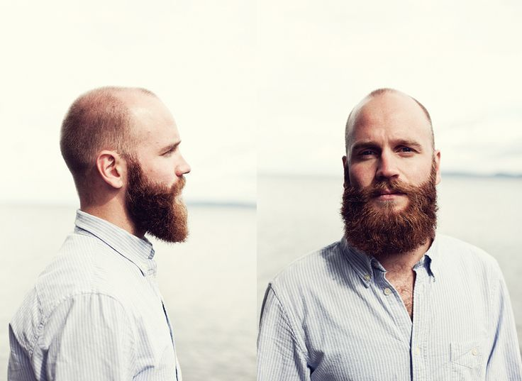 Image result for johan andersson beard