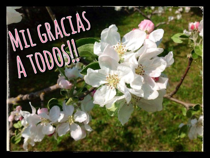 www.amaiabarrenez.blogspot.com