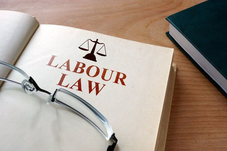 Employment Advice for Employees: 3 Things you should Know About Employment Law