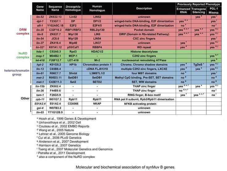 Retinoblastoma Protein Pathway Complexes