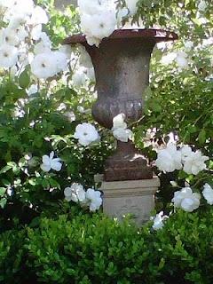 ~ Garden Urn White Iceberg Roses~