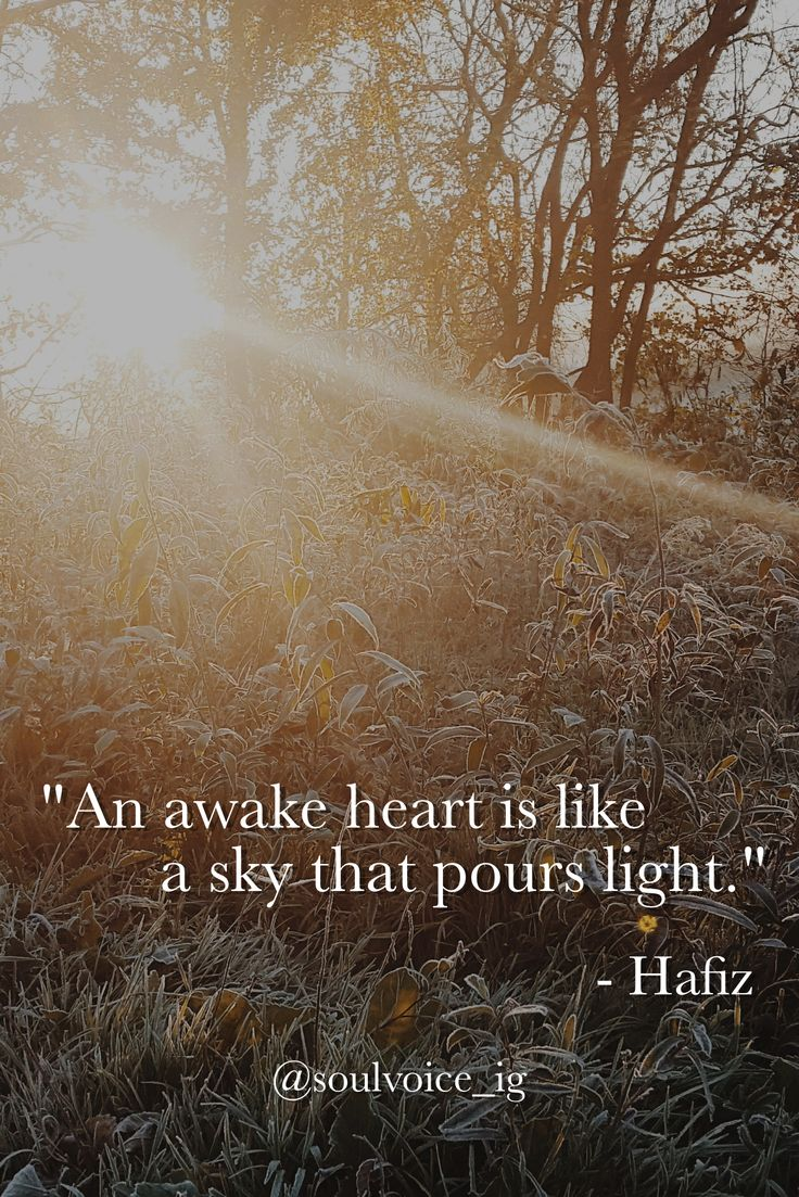 Image result for hafiz poems about the heart