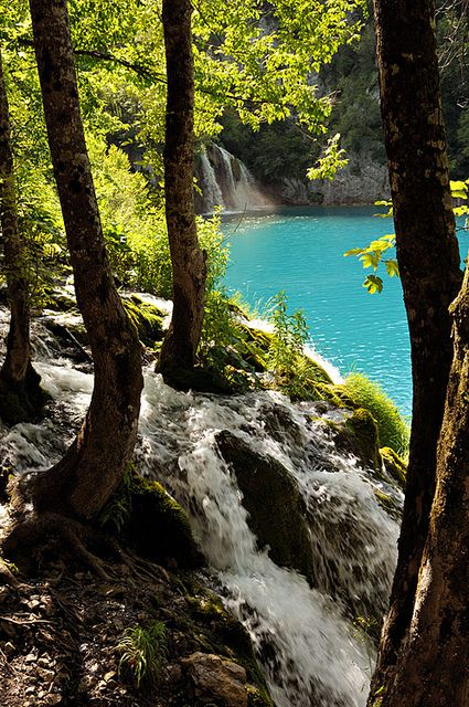 Plitvice Lakes National Park: Best 25+ Plitvice Lakes National Park Ideas On Pinterest