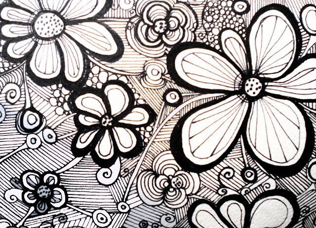 Line Drawing Flower Images : Best leaves images hibiscus drawing