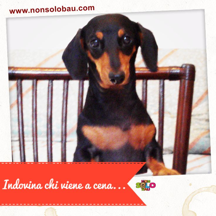 Partecipa al concorso fotografico http://www.nonsolobau.com/concorsi/concorso-fotografico-la-foto-del-mese-f/