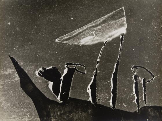 Marek Piasecki, heliografia, [1958] papier fotograficzny, 29,8 x 39,7cm kolekcja prywatna, Kraków