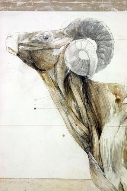 Nunzio Paci - dimensione: cm 150x200 tecnica: matita, olio, smalto, resine, bitume su tela
