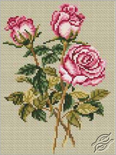 Roses on Linen - Cross Stitch Kits by RTO - C179