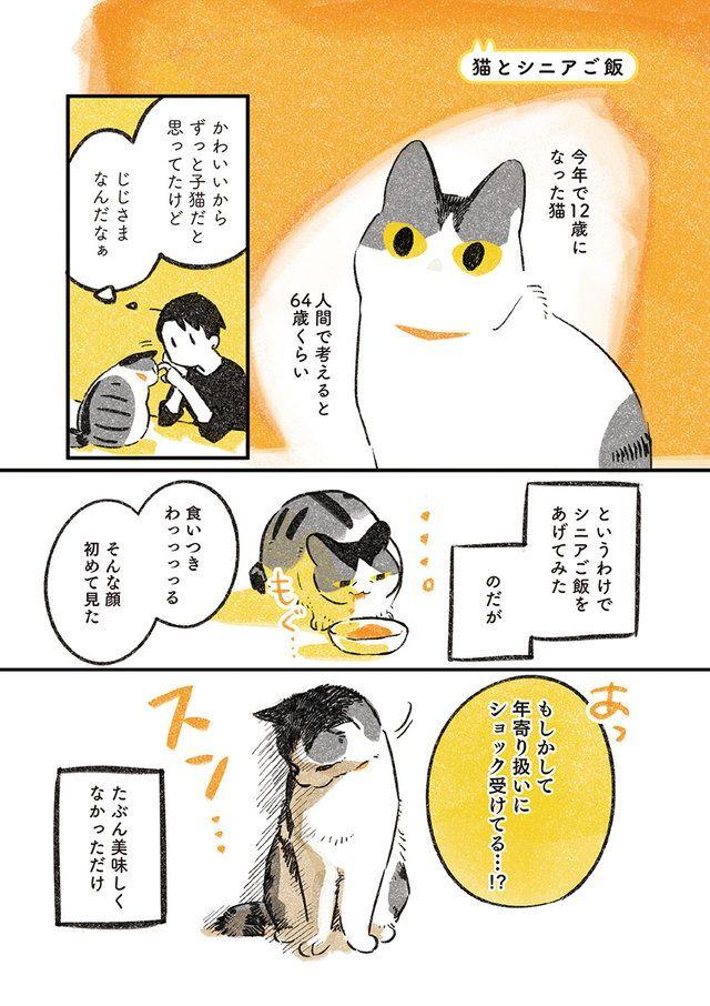 かわいいから 忘れていました おじいちゃん猫らしく シニアご飯をどうぞ 果たして猫の反応は じじ猫くらし 猫 コミック かわいい