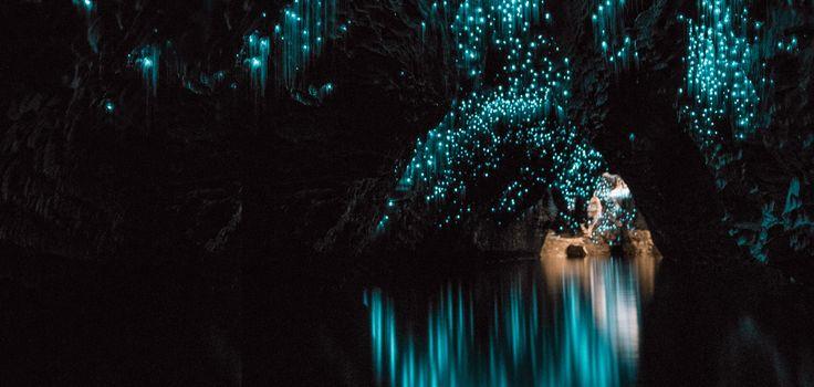 想像の、先を行く。ワイトモ洞窟で異次元の星空。ニュージーランド航空で夢みる旅を ニュージーランド航空公式サイト - Air New Zealand 日本サイト