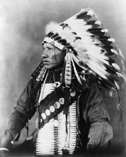 Los siouxes, también llamados siux, dakotas, nakotas y lakotas, son una tribu de nativos americanos asentados en los territorios de lo que ahora son los Estados Unidos y sur de las praderas canadienses. Los siouxes eran uno de los tres grupos de siete tribus que formaban la Gran Nación Sioux que hablaban tres variedades lingüísticas de la lengua sioux, que incluía el lakota, santee y yankton-yanktonai.