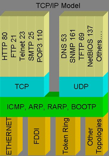 TCP/IP Protocols Model: Notice how the application layer protocols are mapped onto TCP & UDP port numbers.